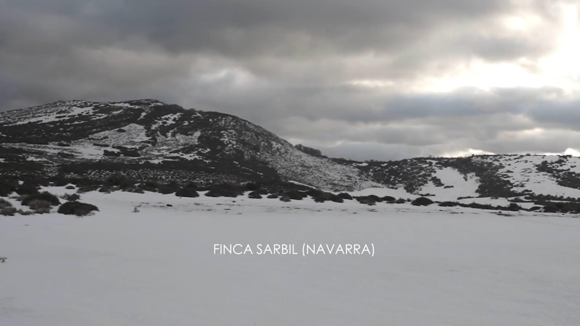 finca-sarbil-turismo-rural-navarra-tierrasdeiranzu.mp4